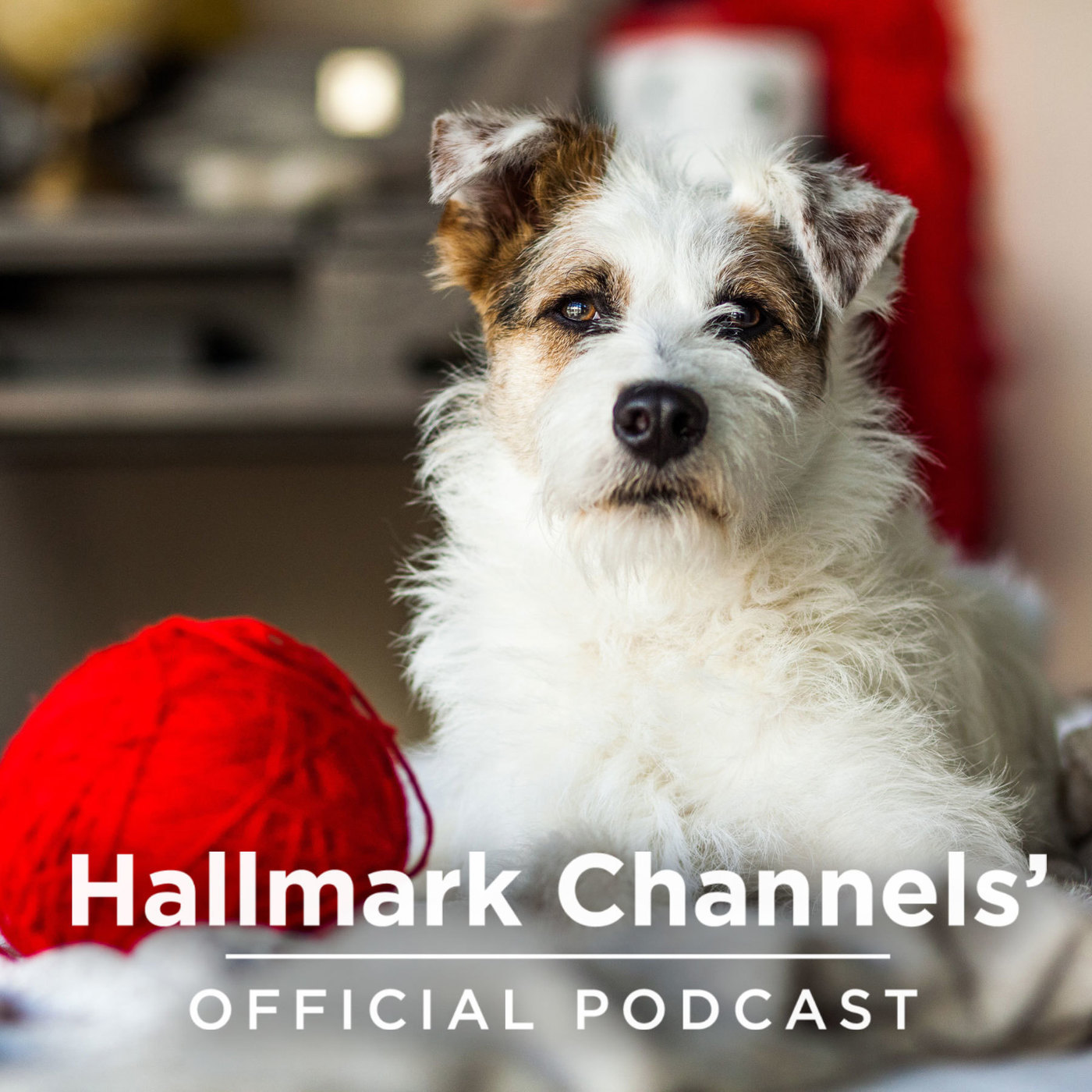 Hallmark Channels' Official Podcast: Adoption Ever After