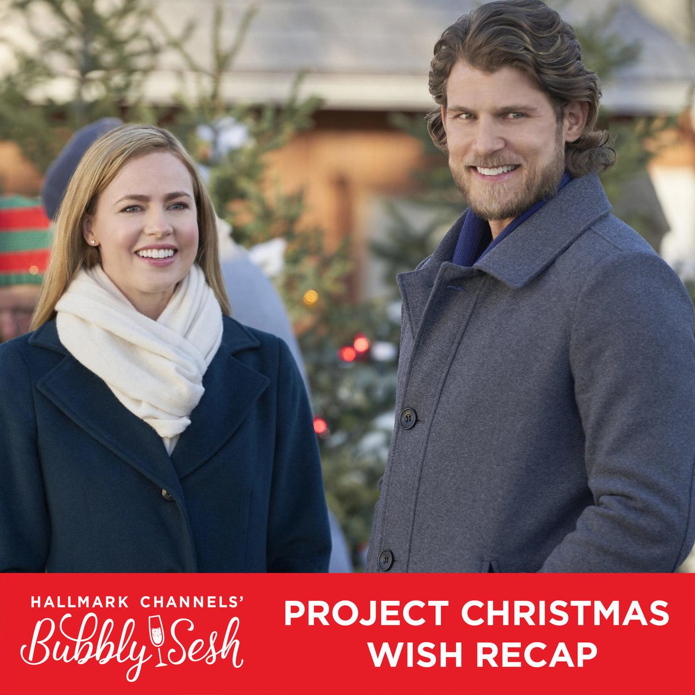 Project Christmas Wish Recap