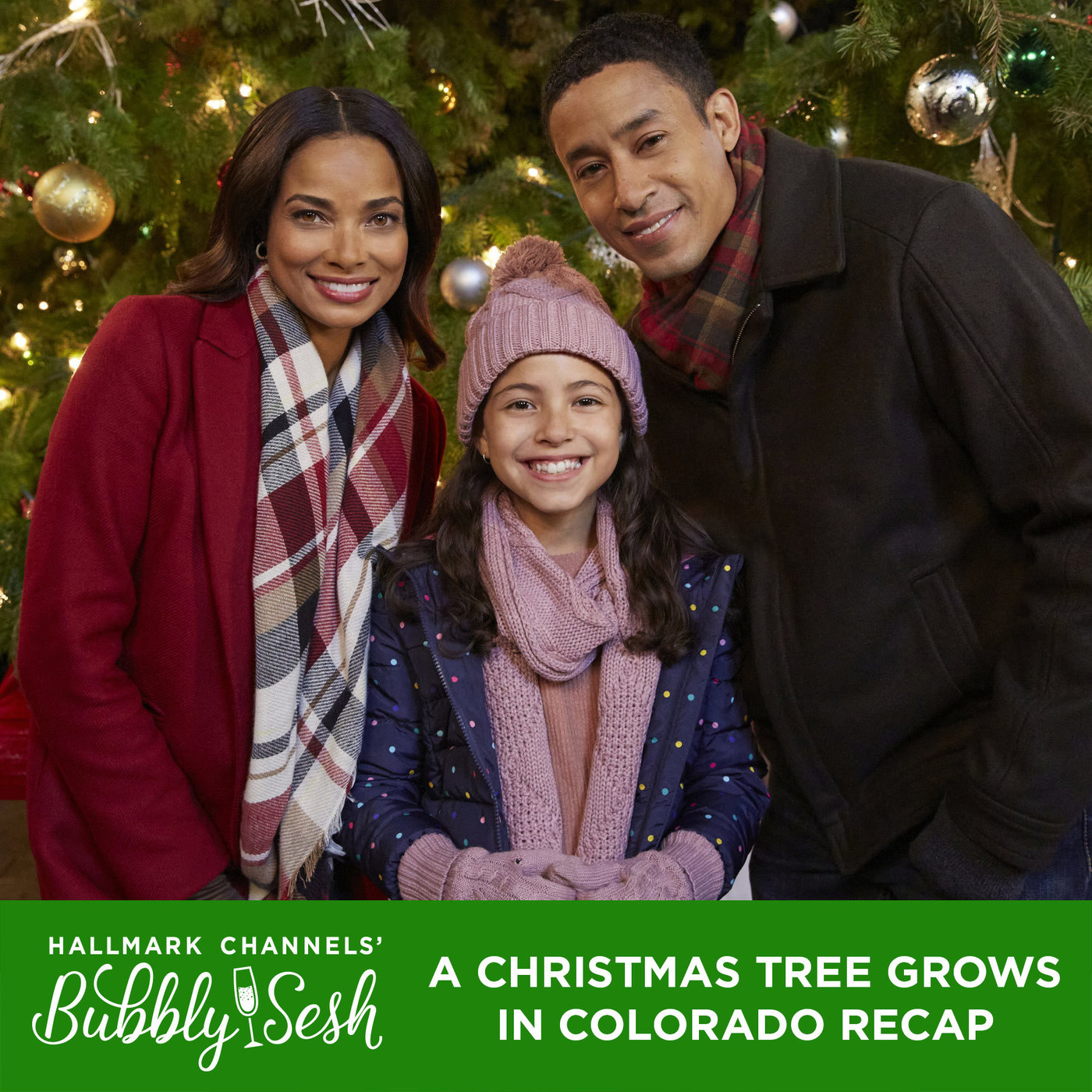 A Christmas Tree Grows in Colorado Recap