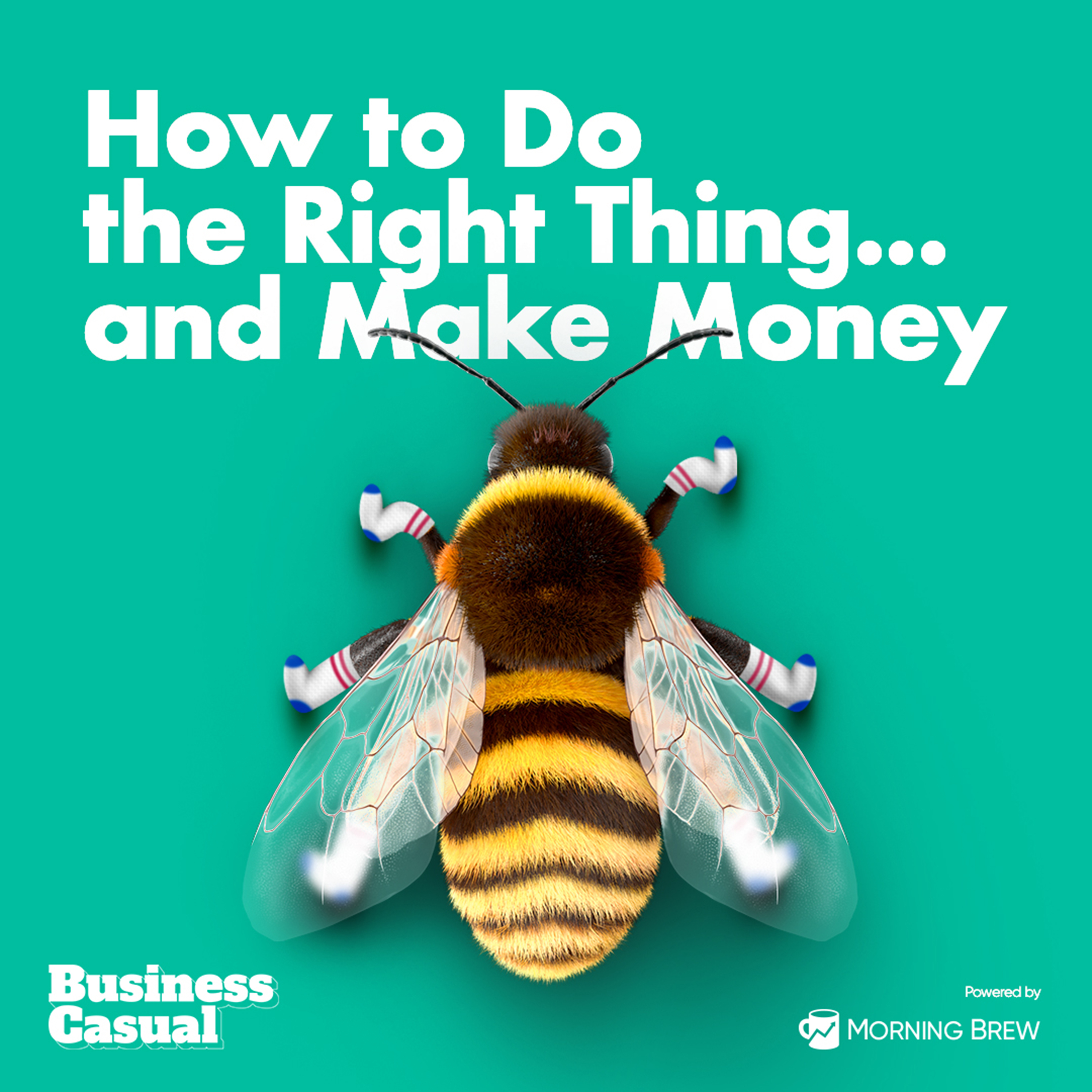 How to Do the Right Thing...and Make Money Image
