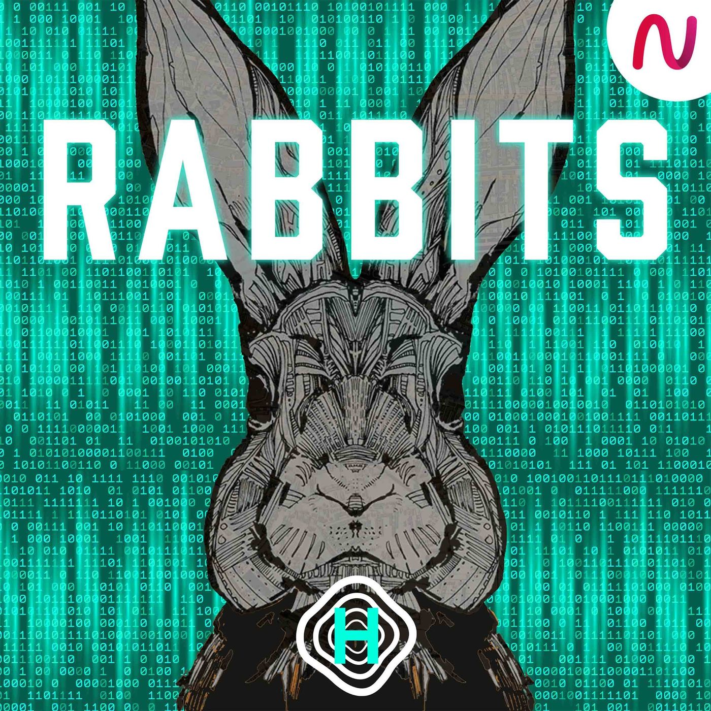 INTRODUCING: Rabbits
