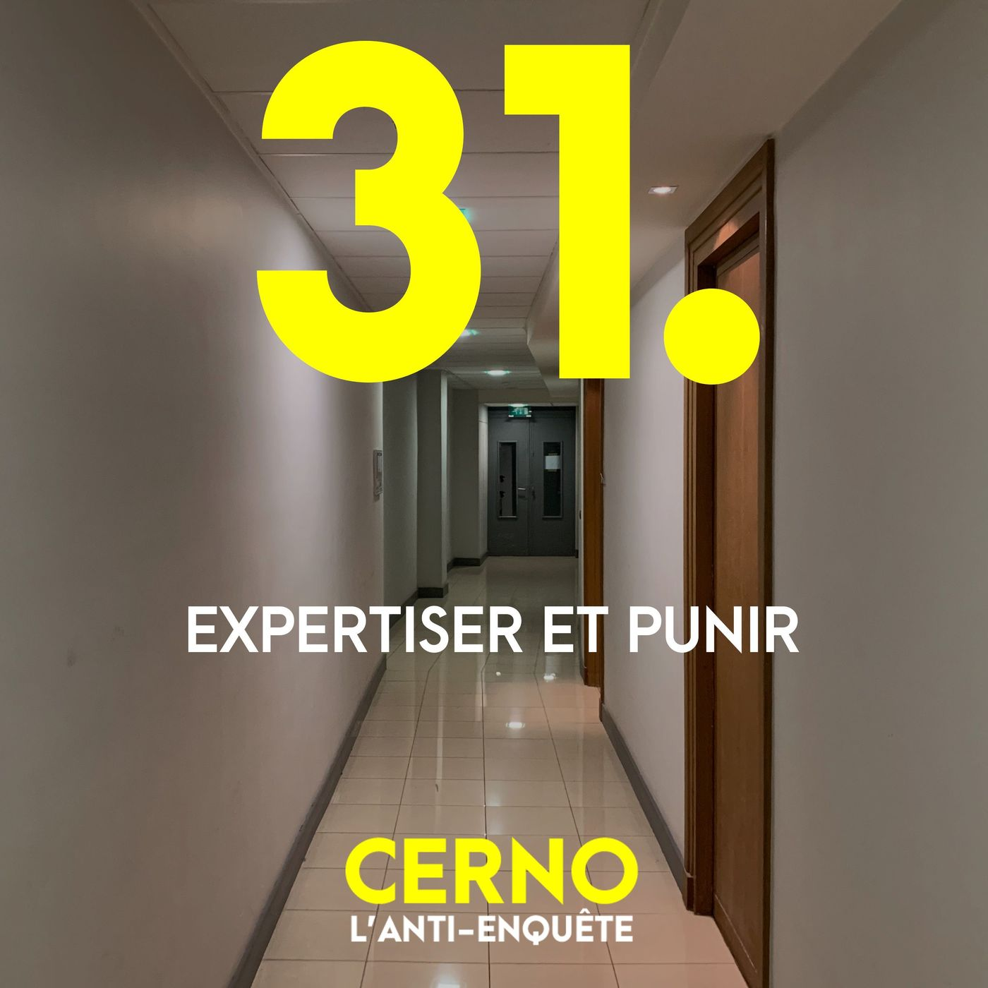 Episode 31 : Expertiser et punir