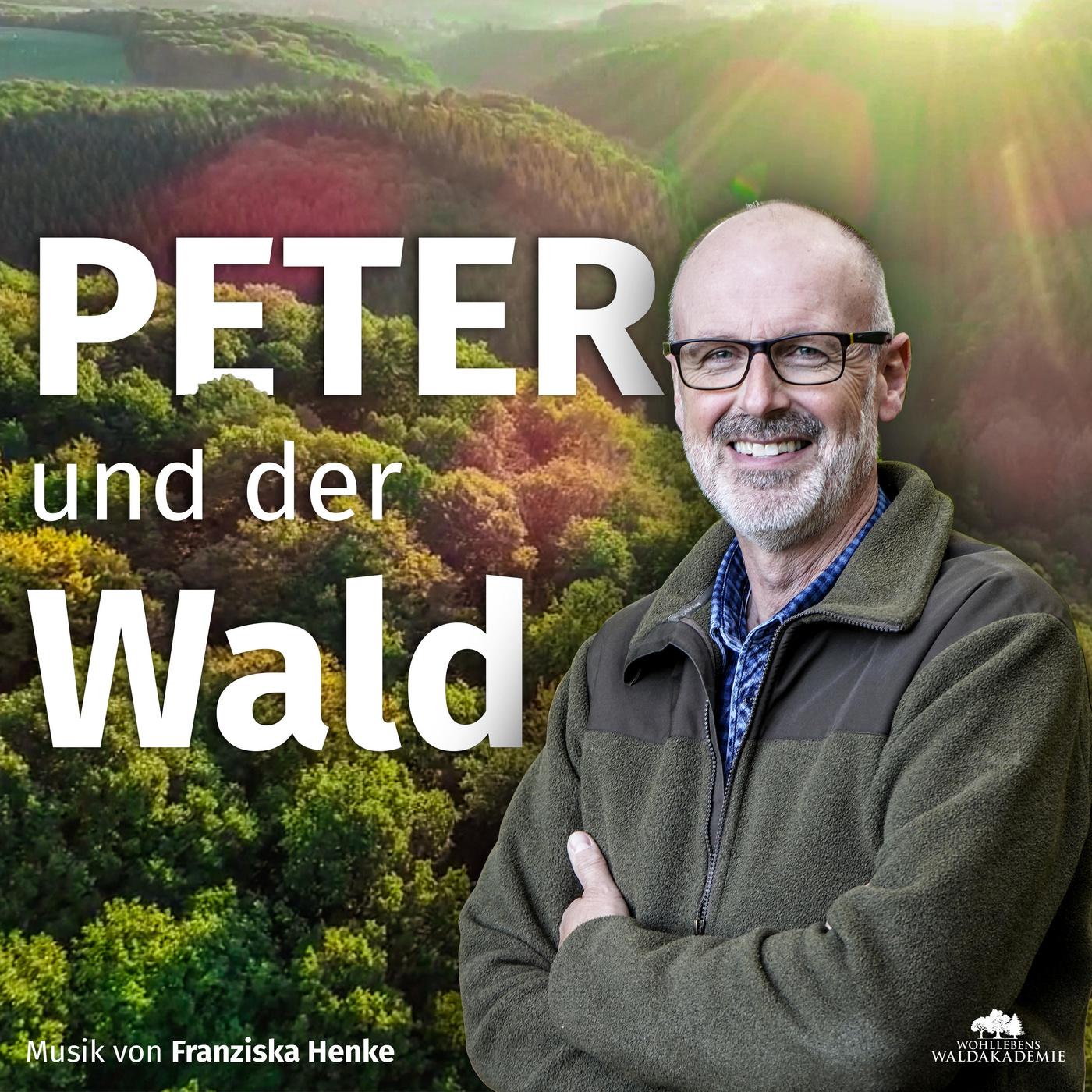 Knut Sturm – Jagd