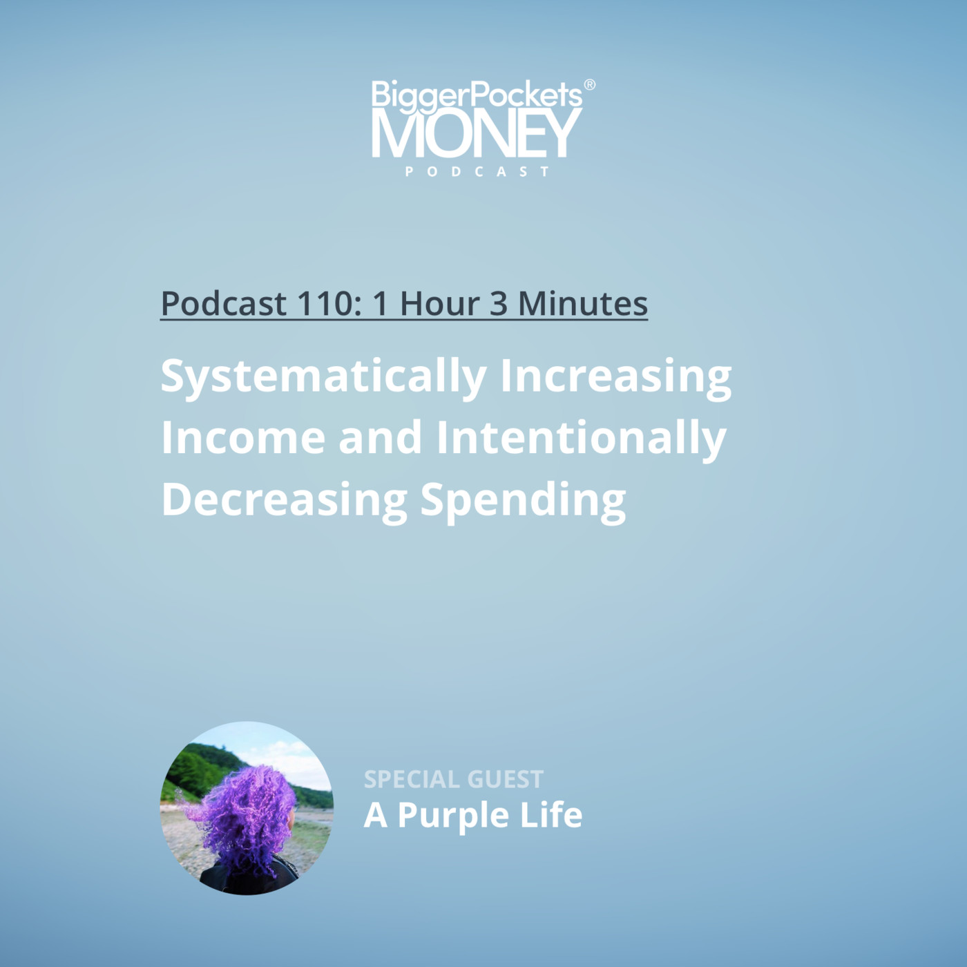 110: Systematically Increasing Income and Intentionally Decreasing Spending with A Purple Life