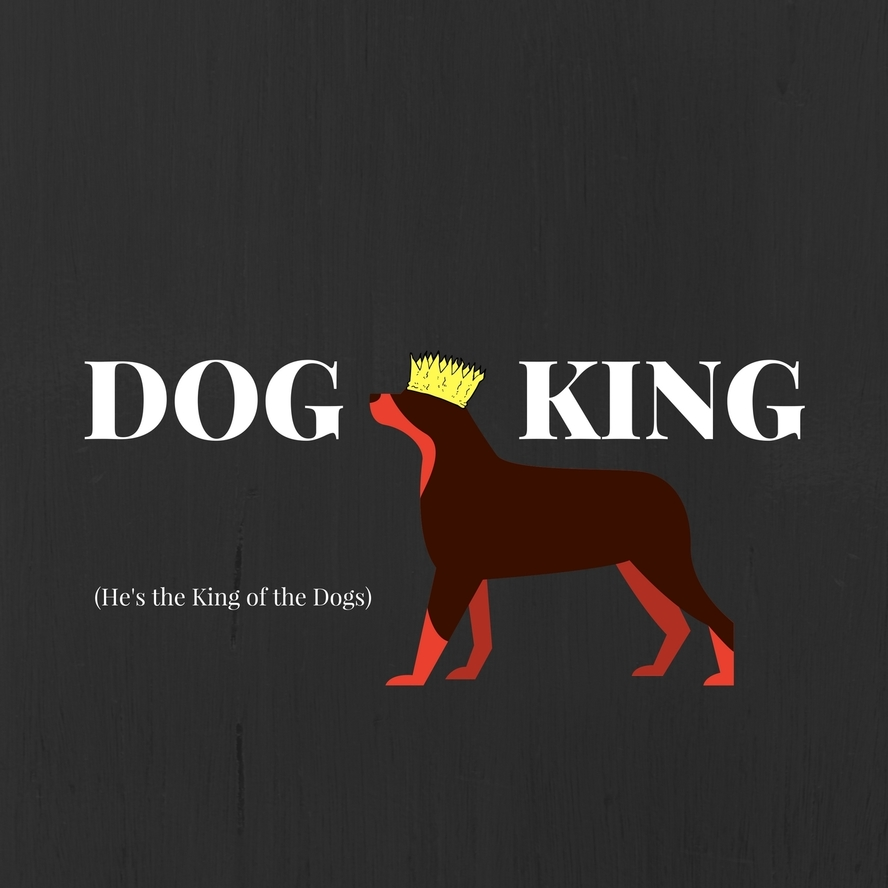 Dog King (He's the King of the Dogs) | Stories Podcast