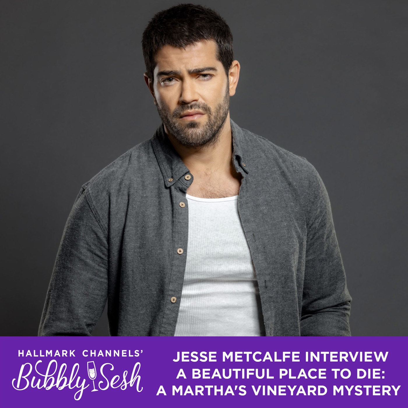 Jesse Metcalfe Interview, A Beautiful Place to Die: A Martha's Vineyard Mystery