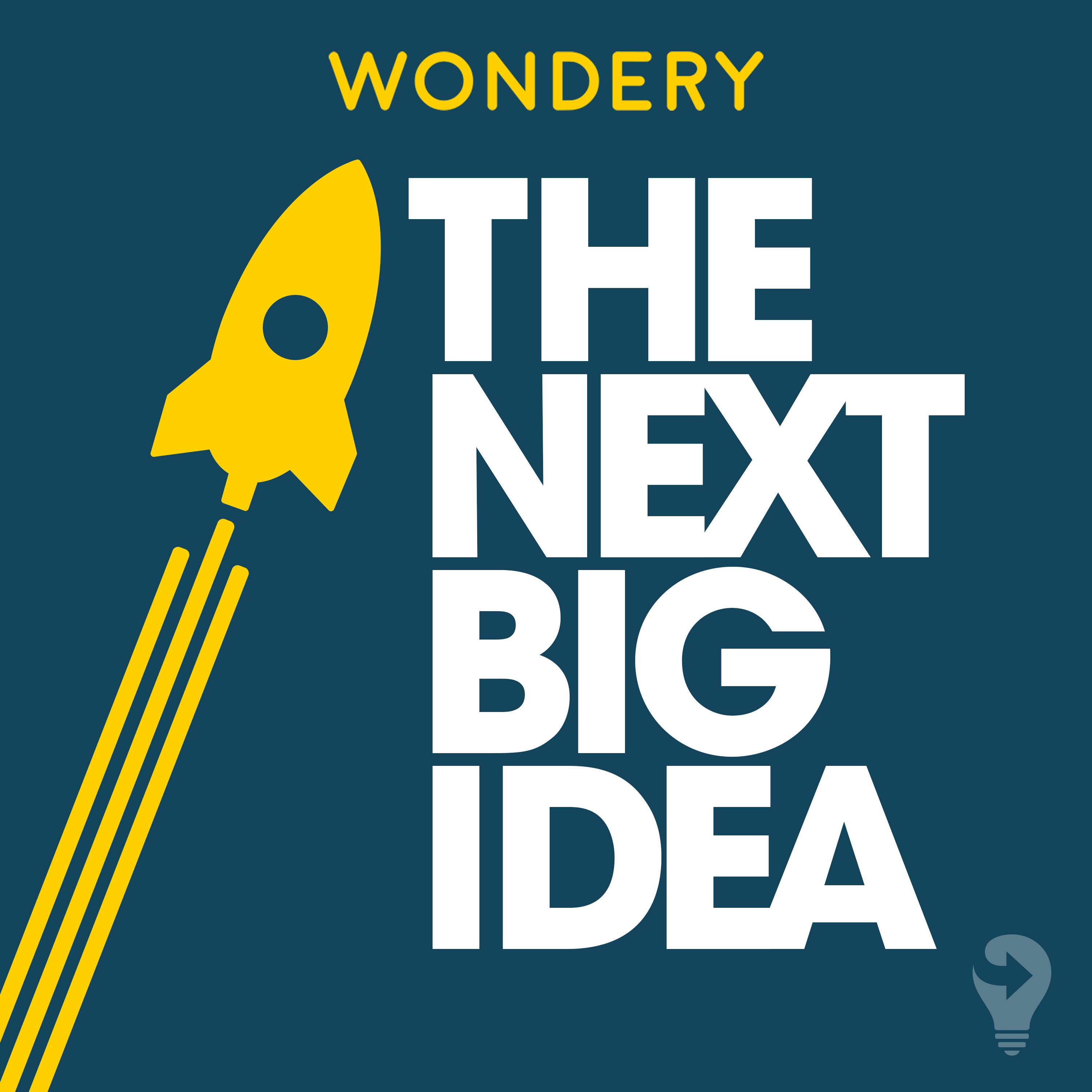 BEGINNERS: The Joys of Being an Amateur by The Next Big Idea